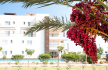 Studio Apartment, Thalassa Beach Resort, Bafra